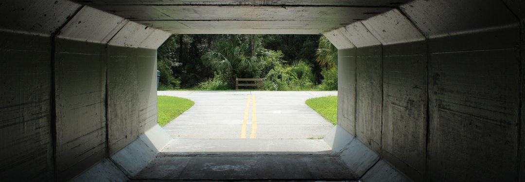 West Orlando WordPress: A Growing WordPress Community in Clermont, Winter Garden, Windermere, and Apopka